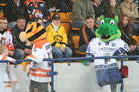 Blaze v Telford Tigers. September 17 2008.